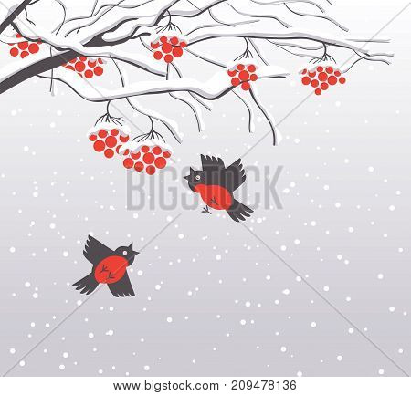 Vector winter landscape with snow-covered branches and red bunches of a Rowan tree and bullfinches in the snow in flat style