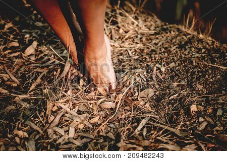 Woman feet in tiptoe position in nature.