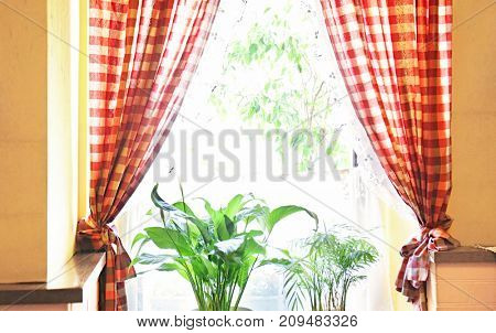 Window with curtains, indoors