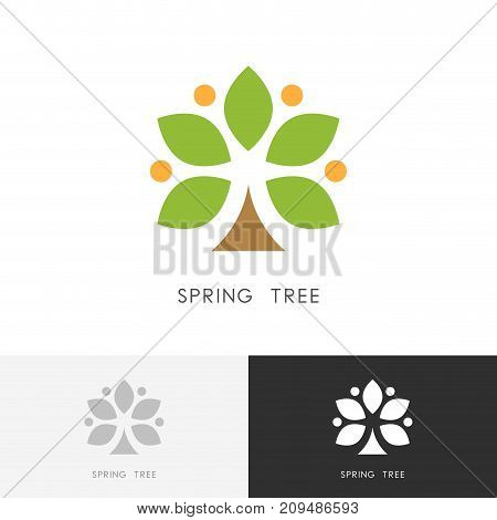 Spring tree logo - blossoming and blooming plant with leaves, flowers and fruits symbol. Nature, ecology and agriculture vector icon.