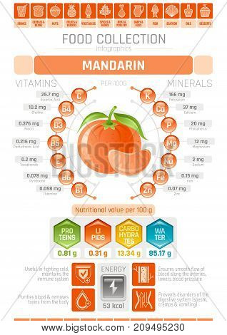 Food infographics poster, mandarin fruit vector illustration. Healthy eating icon set, diet design elements, vitamin mineral supplement chart, protein, lipid, carbohydrates, diagram flat flyer banner