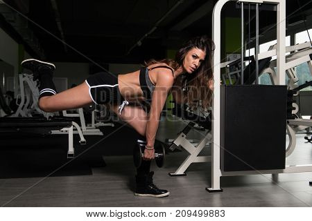Woman Exercising Legs With Dumbbell In The Gym