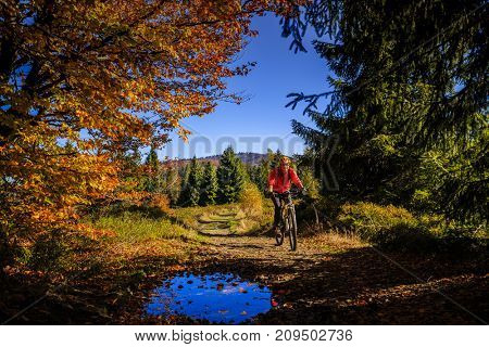 Cycling, mountain biking woman on cycle trail in autumn forest. Mountain biking in autumn landscape forest. Woman cycling uphill trail.