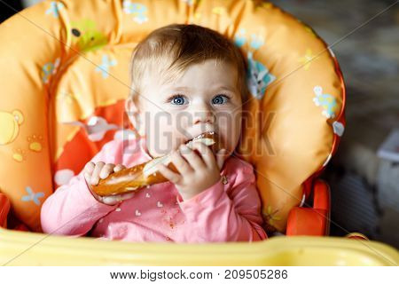 Cute little baby girl eating fresh bread. Child eating for the first time piece of pretzel