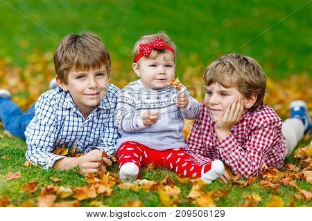 Two little happy kid boys with newborn baby girl, cute sister. Siblings on grass in autumn park with yellow and red maple leaf. Kids bonding. Family of three children