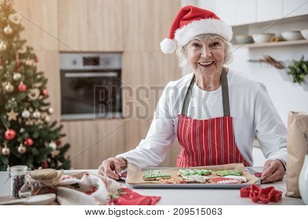 Waist up portrait of happy mature woman standing at table in kitchen and holding tray with self-baked cookies. She is looking at camera and smiling. Christmas tree on background