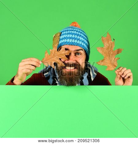 Autumn And Fallen Leaves Season Concept. Hipster With Beard