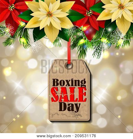 Boxing day sale tag with evergreen trees with poinsettia christmas lights isolated on bokeh background