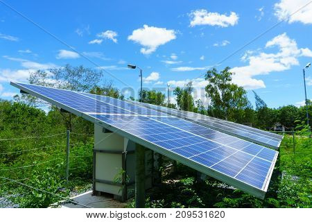 solar cell generating electricity and installed in the forest with blue sky and cloud and green tree background. electricity ecology power concept.