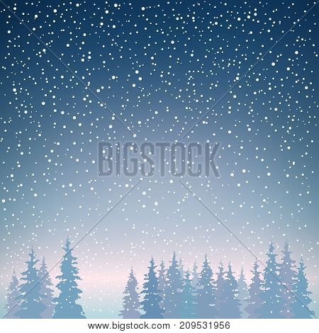 Snowfall in the Forest Snow Falls on the Spruces Fir Trees in Winter in Snowfall Winter Background Christmas Winter Landscape in Dark Blue Shades