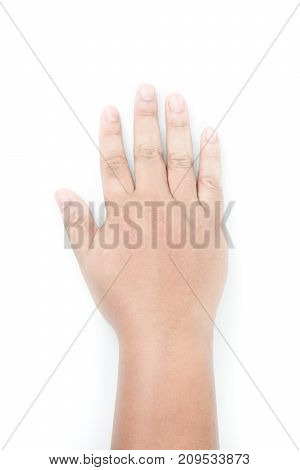 back of right hand side yellow brown skin tone on white background hand of fat man