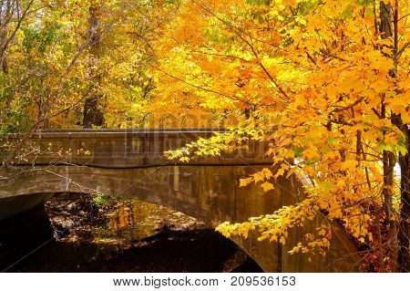 A bridge spanning a creek with fall colors.