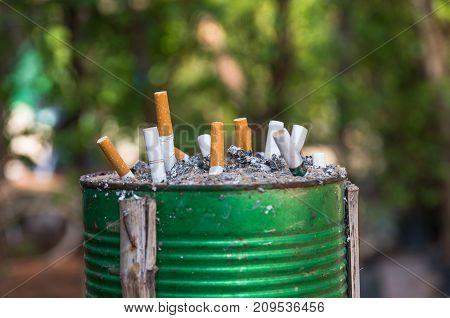 Cigarette Smoking Ashtray in green bin and garden