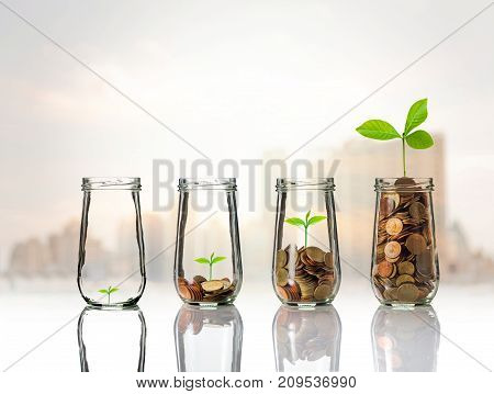 Gold coins and seed in clear bottle on cityscape photo blurred cityscape backgroundBusiness investment growth concept, 3D illustration