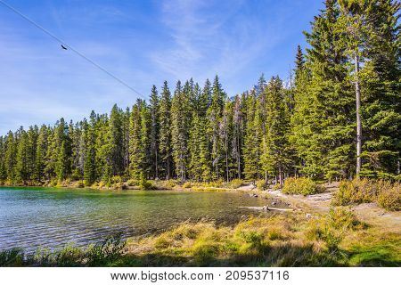 The morning sun warms the picturesque lake Two Jack with emerald water. Coniferous forest grows on the shores of the lake. The concept of ecological and active tourism