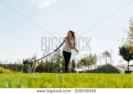 young active girl walking with her big dog on the green grass
