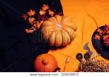 for decorating a house on halloween on an orange and black blanket lying pumpkin and maple leaves