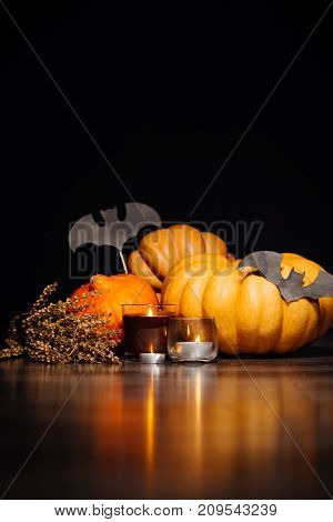 beautiful composition for halloween of orange and yellow pumpkins, burning candles and painted black bats
