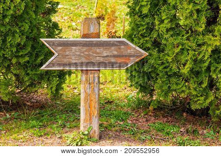 Wooden direction pointer between two trees in the park