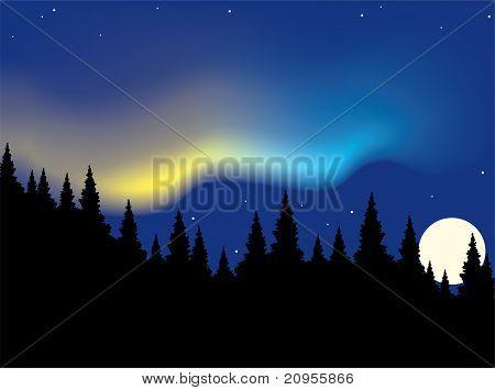 Vector Aurora Polaris Over Forest