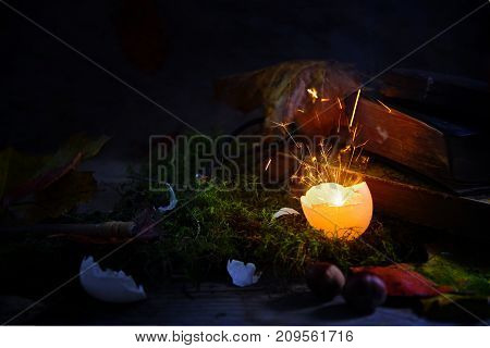 glowing and sparkling eggshell on moss with autumn leaves and old book mysterious halloween still life against a dark rustic background selected focus narrow depth of field