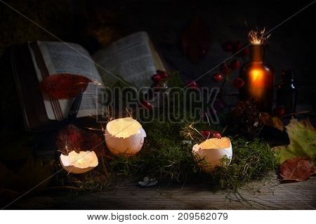 glowing and sparkling eggshells and pharmacy bottles in front of a magic book on moss and autumn leaves dark rustic wooden background halloween concept mysterious still life selected focus narrow depth of field