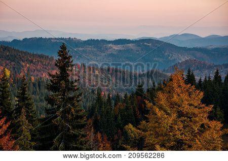 Beautiful Autumn Scenery In Mountains