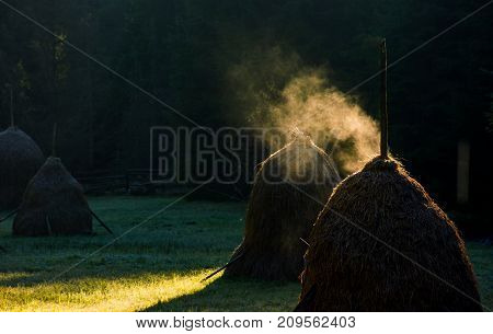 steaming haystack near the forest at sunrise. rare rural background