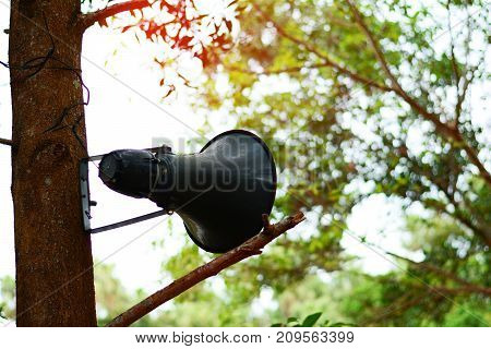 The Old Speaker Amplifier  Hang On A Tree At The Temple In Thailand