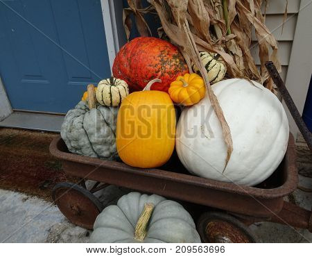 Colorful pumpkins and a blue door create a festive fall display.