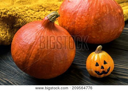 Halloween holiday with pumpkins and wool clothes