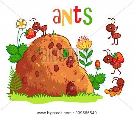 Vector Illustration With An Anthill And Ants.