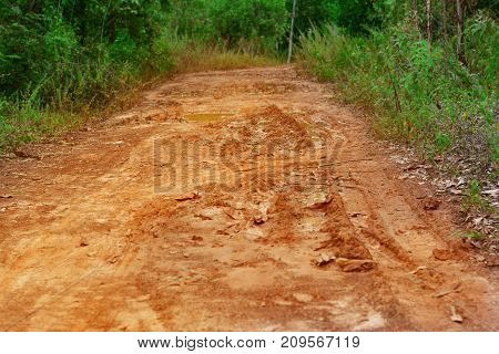 the muddy rural road with wheel print