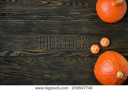 Halloween holiday background with pumpkins. View from above.