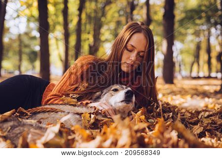 a lovely girl of years on the fallen leaves with her dog and looked down. Autumn weather, golden autumn, sunny day.
