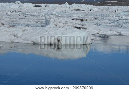 Breathtaking view of a large icecap in Iceland with a lot of birds resting on the icecap