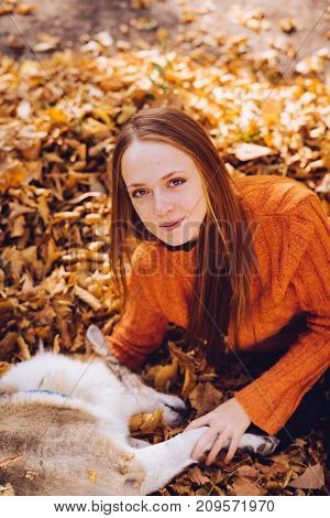 the lovely girl lies on fallen autumn leaves with her dog. Warm weather, autumn day,