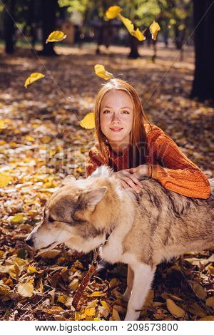the lovely girl lies on fallen autumn leaves with her dog. Warm weather, autumn day, falling leaves