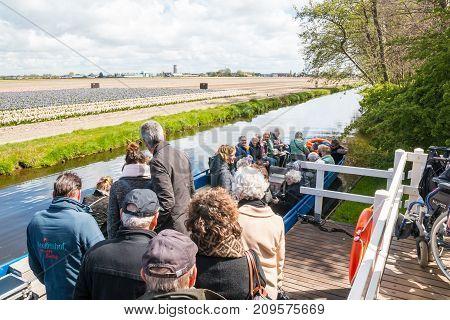 People On The Boat Near Field Of Tulips In The Park Of Flowers Keukenhof
