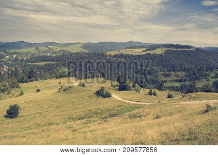 Mountain landscape. Pienins in Poland. Summer landscape of a mountains