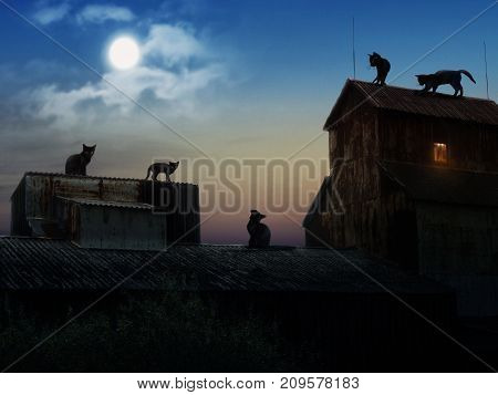 Many black cats on the roofs of old houses. Night moon. The picture on the subject of Halloween