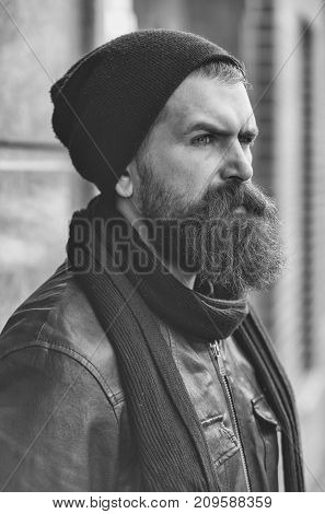 Bearded Man Hipster With Serious Face In Leather Jacket