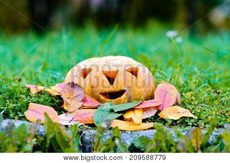 pumpkin for Halloween with eyes and mouth in the Park in the grass among the leaves