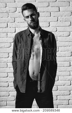 Slim Bearded Man In Purple Shirt On Brick Wall Background