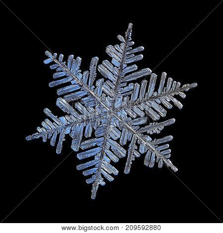 Snowflake isolated on black background. Macro photo of real snow crystal - large stellar dendrite with fine hexagonal symmetry, six long, elegant arms with lots of side branches and glossy surface.