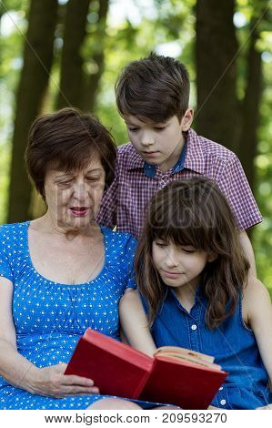 Elderly woman girl and boy are reading a book against green nature background. Grandmother and grandchildren. Concept of harmony relationship between generations.