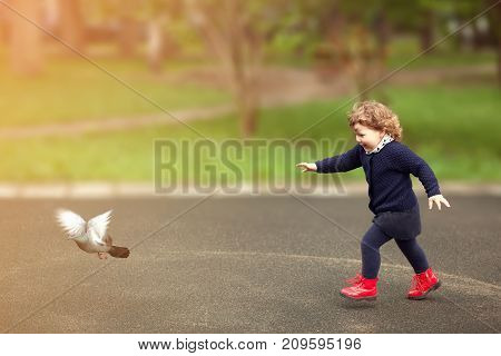 Little girl running flaunts the pigeons on the street in town. Toning sun light.