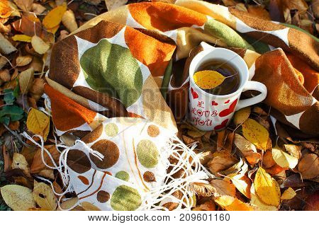 Autumn Leaves Around Coffee Pots