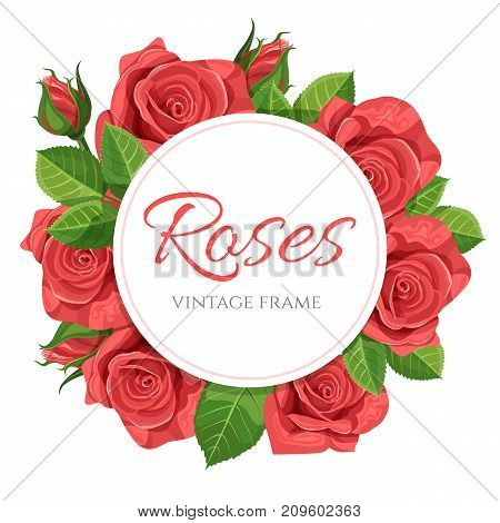 Red rose flower vector illustration in vintage style round frame isolated on white background.