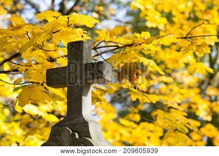 Old stone memorial cross at cemetery. Religious Christian symbol on autumn trees background